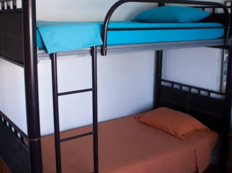 "Surf Hostel Cabo ""The Riptide"" Mixed Dorm Room"